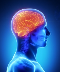 Brain injuries, while seemingly mild on the outside, can lead to severe health consequences.